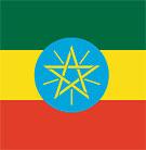 Del av Etiopiens flagga