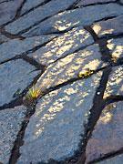 Olikformade stenar bildar ett fint mönster.