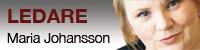 Vinjett: Ledare av Maria Johansson, förbundsordförande i DHR